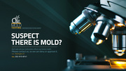 Mold Inspection & Testing in Washington,  DC