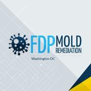 Mold Remediation Service in Washington,  DC